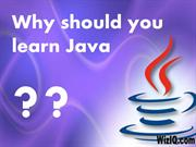 Why should you learn Java