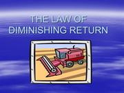 THE_LAW_OF_DIMINISHING_RETURN