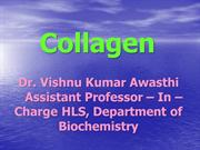 DR VISHNU Collagen