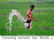 Farming Around the World (1)