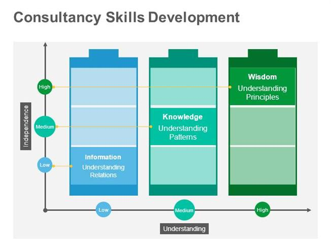consultancy skill development editable ppt training slide