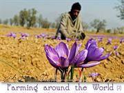 Farming Around the World (2)