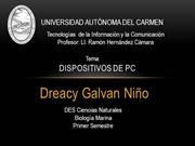 Galvan, Dreacy,PC,TIC M-J 11-13