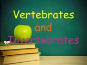 Vertebrates and Invertebrates