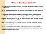 Broadcast Gorilla Review - Stop Read This!!!