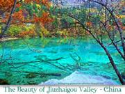 Beauty of Jiuzhaigou Valley -  China