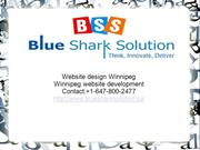Website design Winnipeg,e-commerce website design