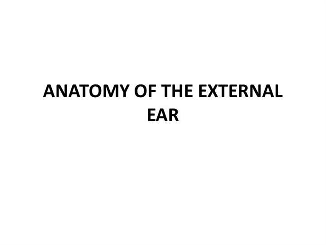 Anatomy Of External Ear And Middle Ear Authorstream