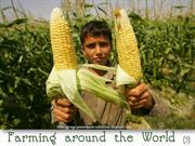 Farming Around the World (3)