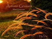 1-Grass6-Autumn Grasses