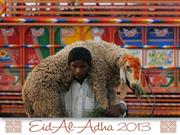 Eid Al-Adha 2013 around the World