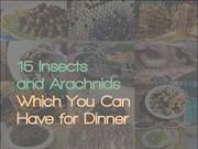 15 Insects and Arachnids Which You Can Have for Dinner