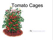 Popularity Of Tomato Cages For Plantation
