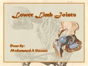 lower limb joints