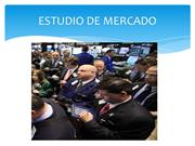 ESTUDIO DE MERCADO vasques