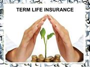 Everything About Term Life Insurance