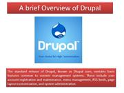 A Brief Overview of Drupal