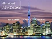 Beauty_of_new_zealand (NXPowerLite) (NXPowerLite)