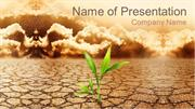 Plant Fighting With Drought PowerPoint Template Backgrounds