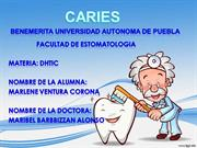 Ensayo: CARIES DHTIC