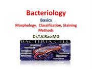 BBacteriology Basics  Morphology, Classification, Staining Methods