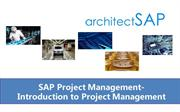 SAP Project Management-Introduction to Project Management