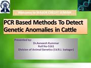PCR Based Methods To Detect Genetic Anomalies in Cattle