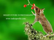 BRIGHT FUTURE IN PHOTOGRAPHY