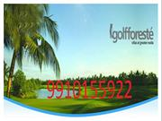 Paramount Golforeste Resale - 9910155922 Villas Greater Noida