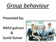 Group behaviour (1)