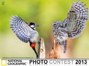 NG Photo Contest 2013 (part2)