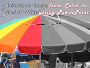 Animate an image from Color to Black & White using PowerPoint