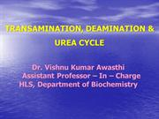 DR VISHNU KUMMAR     Urea cycle, Trans amination & Deaminationpp