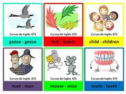FLASHCARDS - IRREGULAR PLURALS