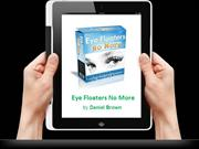 Daniel Brown: Eye Floaters No More PDF-Book