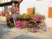 language_des_fleurs (Vietnamese added)