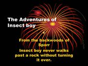 The Adventures of Insect Boy