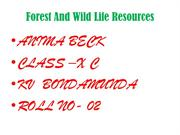 Forest And Wild Life Resources