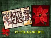 CUETLAXOCHITL (History of the Poinsettia.Historia de la Flor de Pascua