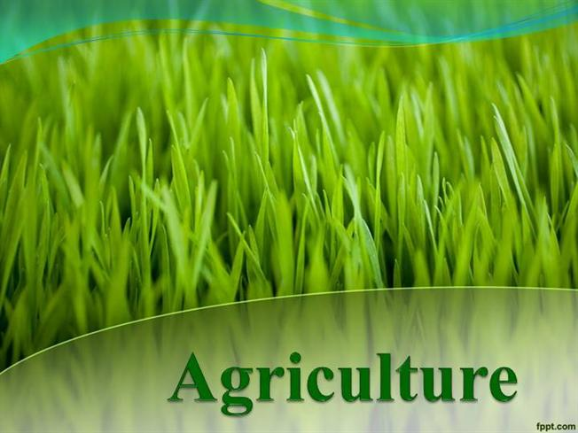 Agriculture powerpoint templates the best agriculture of 2018 155 best agriculture powerpoint templates themes backgrounds images toneelgroepblik Choice Image