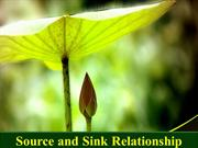 SOURCE AND SINK RELATIONSHIP