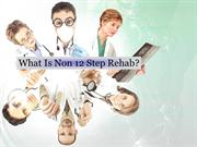 What Is Non 12 Step Rehab