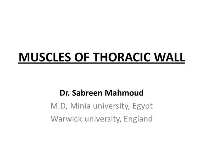 MUSCLES of THORACIC WALL &Intercostal Nerves |authorSTREAM