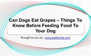 Can Dogs Eat Grapes – Things To Know Before Feeding Food To Your Dog