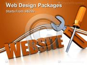 Web Design Packages Starts From S$299