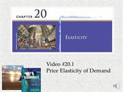 #20.1 -- Price Elasticity of Demand (9.20)
