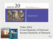 #20.4 -- Cross Elasticity and Income Elasticity of Demand (5.48)