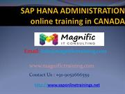 sap hana admin online training/online training/classes