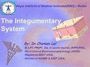 Integumentary system By: Chaman Lal Karotia (CK)