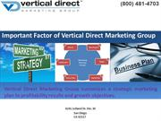 Important Factor of Vertical Direct Marketing Group